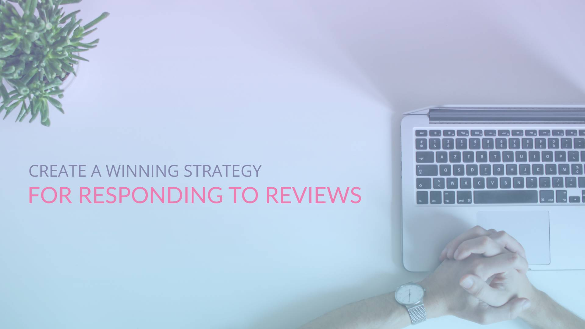 Create a winning strategy for responding to hotel reviews on TripAdvisor